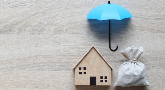 4 Major Reasons Households in Forbearance Won't Lose Their Homes to Foreclosure   Simplifying The Market